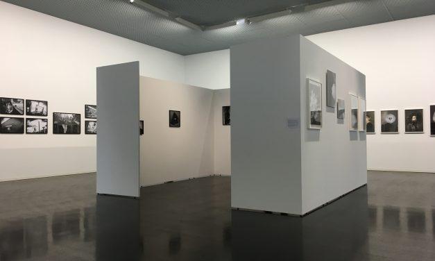 Wiesbadenin valokuvapäivät 17.8-1.9.2019